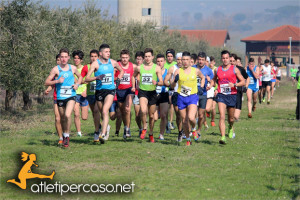 Cross Benevento 2015